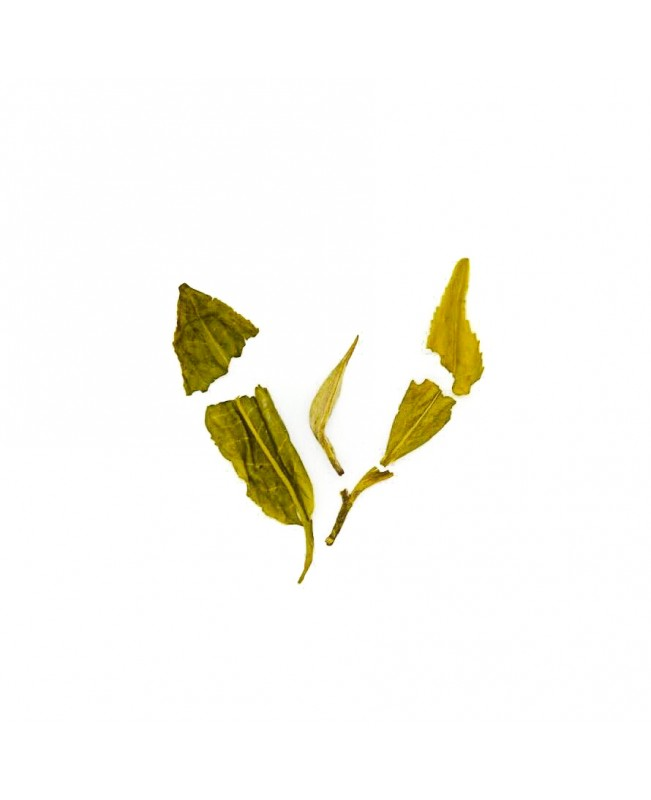 Green 120gm Loose Leaf